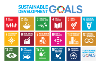 Next-Gen-Capital-Sustainable-Development-Goals